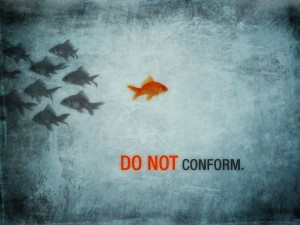 do-not-conform-fish-300x225